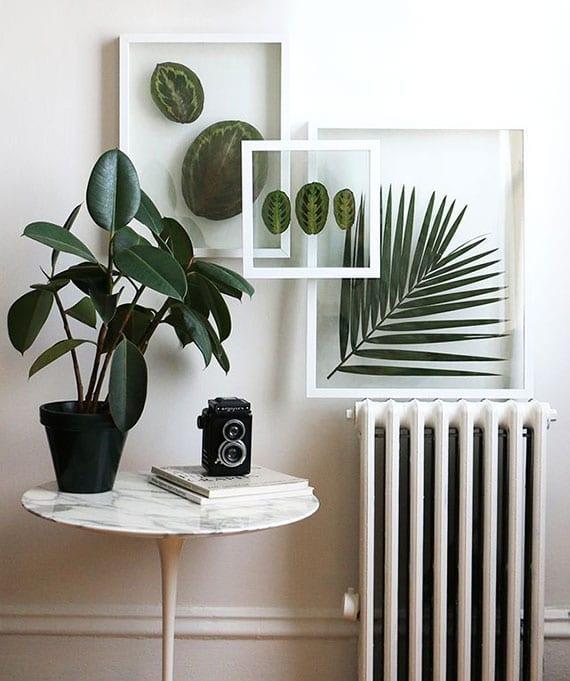 moderne wanddekoration mit blättern von Grünpflanzen in weißen holzrahmen mit zwei glasscheiben