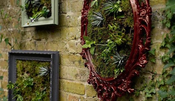 diy-wanddeko-für-innen-und-außen-mit-wandgemälden-aus-fettpflanzen-in-bilderrahmen
