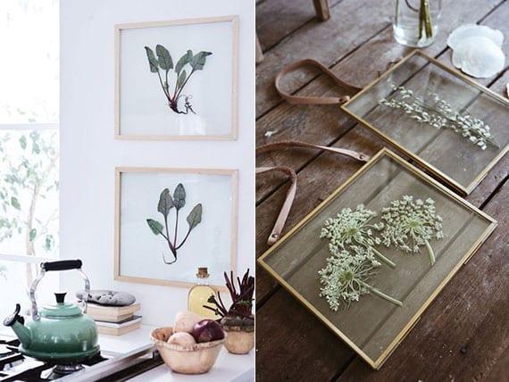 effektvolle ideen für selbstgemachte Herbarium-Wandekoration in der küche oder im wohnzimmer