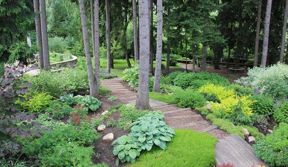 reizvolle-natürliche-gartengestaltung-in-hanglage-mit-vielen-nadelbäumen