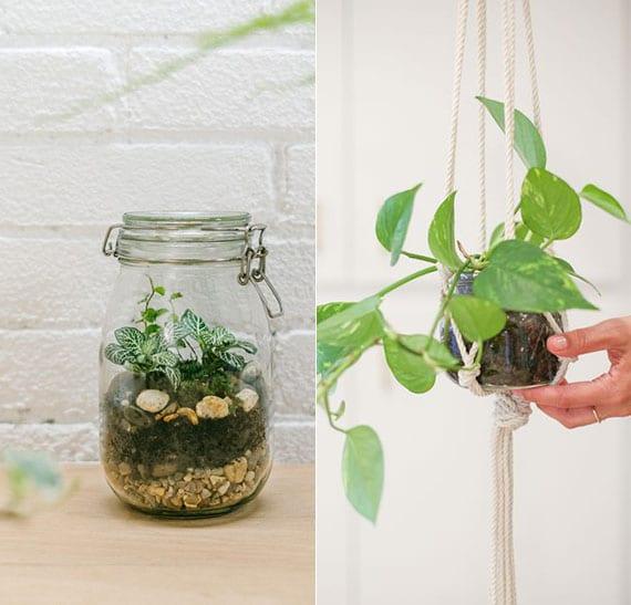 coole bastelideen für DIY Pflanzen-Terrarium und DIY Markamee-Ampel mit weckglas