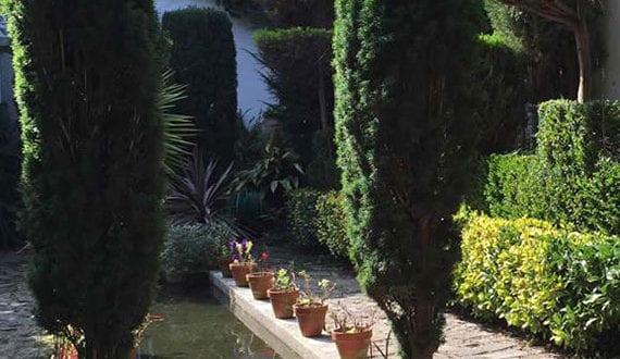schöne-und-platzsparende-gartengestaltung-kleiner-gärten-mit-säulenförmigen-Bäumen