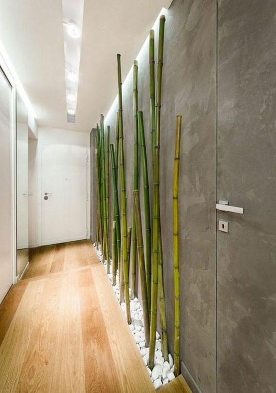 minimalistische korridor dekoidee mit grauer akzentwand als hintergrund für grünen bambus im kiesboden