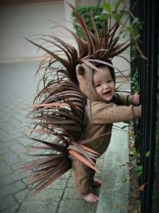stachelswein-kostümidee-zu-halloween-für-babys