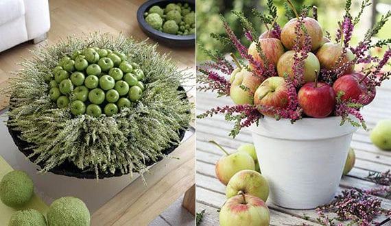 äpfel-im-blumentopf-arrangieren_fantastische-deko-ideen-mit-äpfeln,-eriken-und-callunen