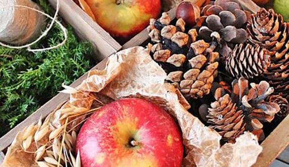 herbstdeko-mit-äpfeln-und-naturmaterialien_einen-kleinen-herbstzauber-selber-basteln