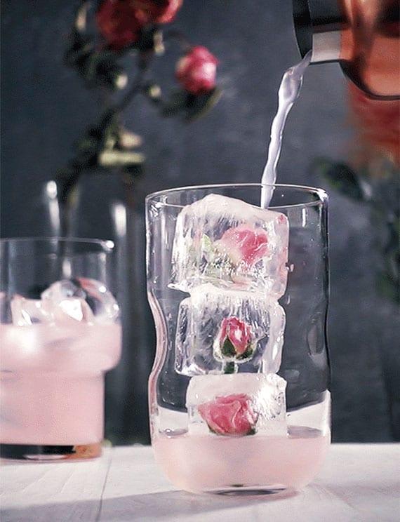 coole Cocktails mit Holunderblütenlikör und Sekt oder Champagner für Damen am Valentinstag