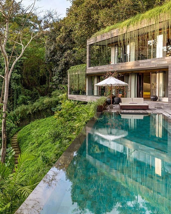 zweigeschoßiges wohnhaus am hang in wald mit begrüntem dach, überdachter terrasse und blick auf großes schwimmbecken