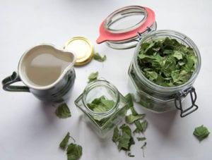diy-bio-waschmittel-aus-Birkenblättern_naturputzmittel-und-waschpulver-selber-machen