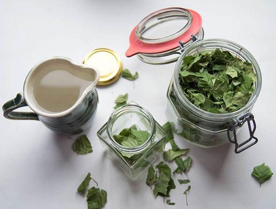 naturwaschmittel aus Birkenblättern herstellen und wäsche natürlich waschen