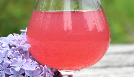 fliederwein-selber-machen_tolle-rezepte-für-hausgemachte-getränke-aus-flieder