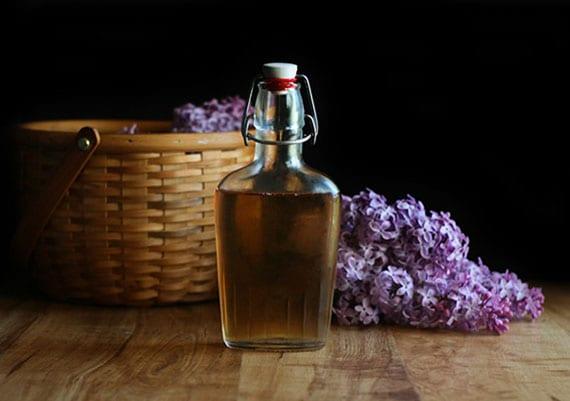 likör aus wodka und fliederblüten selber machen