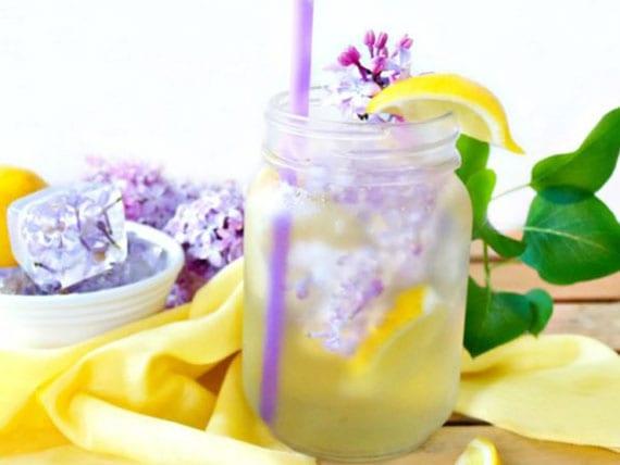 rezept für diy limonade aus zitronen und fliederblüten