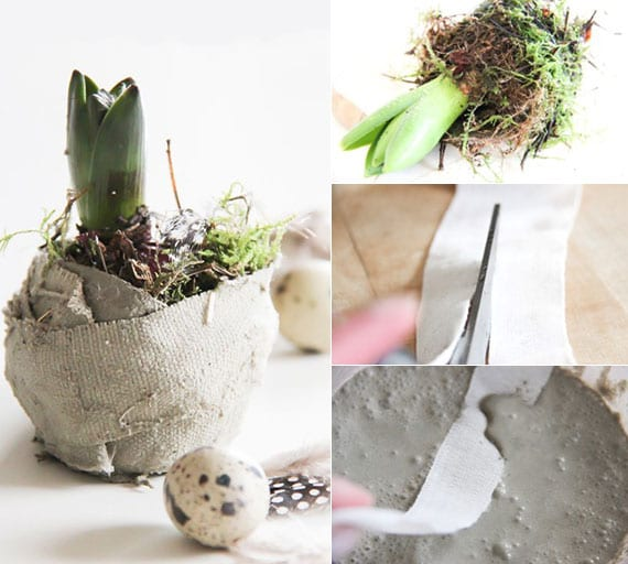 Blumenzwiebeln in Zement als schöne frühlingsdeko basteln zu ostern