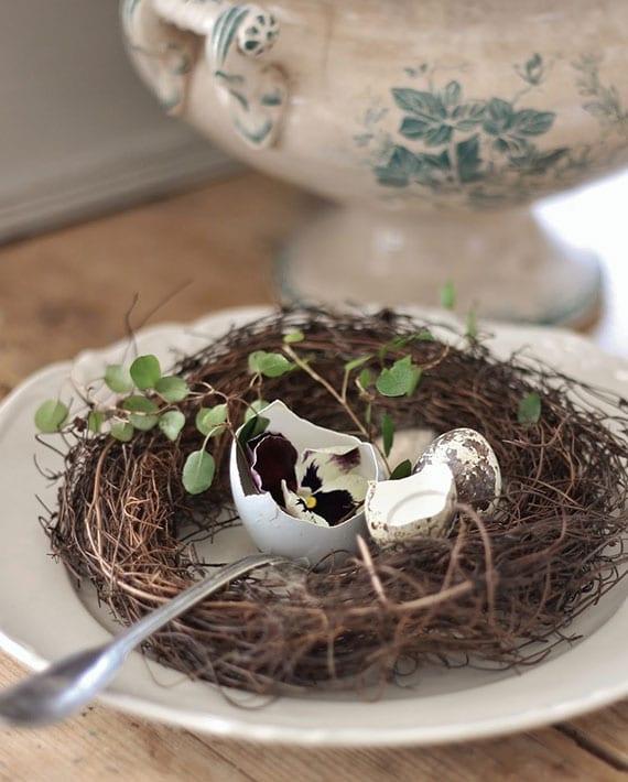 kreative inspirationen für kreative tischdekoration mit osternest und veilchen in eierschale