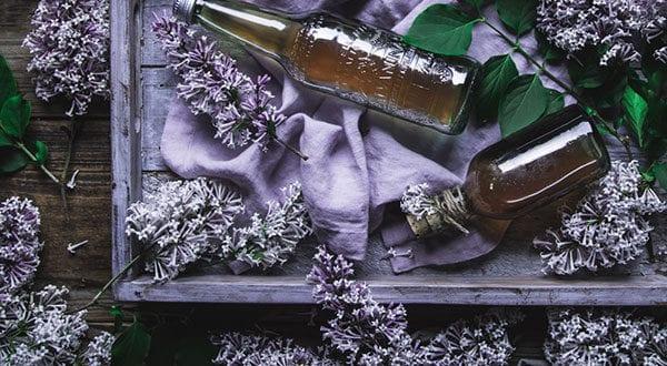 Getränke und Köstlichkeiten aus Flieder zaubern