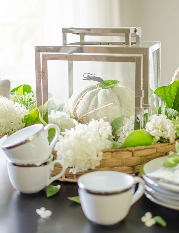 coole herbstdeko zu halloween mit weißen hortensienblüten und einem kürbis in laterne