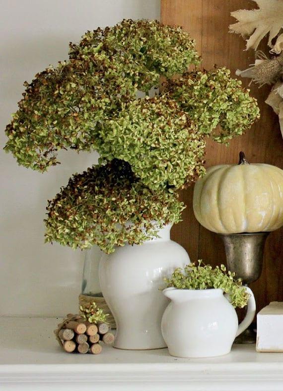 stilvolle dekoration zu halloween mit kürbissen und grünen hortensien in weißen vasen