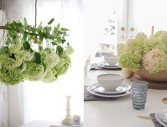 grüne hortensien als originelle hängedeko und edle tischdeko