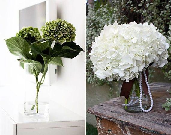 hortensien einfach und modern in vase dekorieren