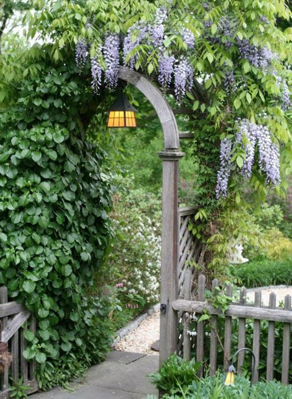 romantische gartengestaltung mit holztor und wisteria-laube