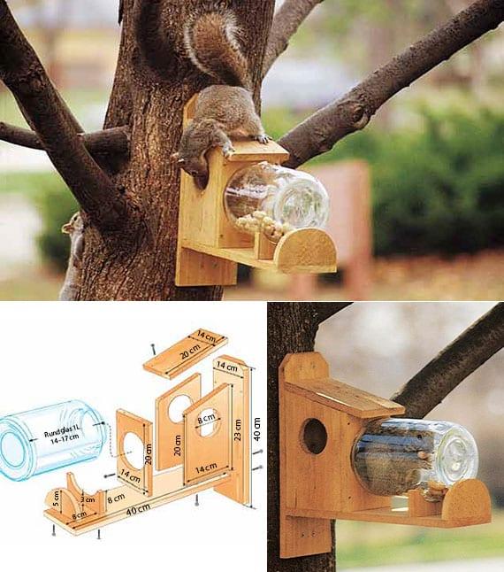 Gartenproejkt für eichhörnchen-futterstelle
