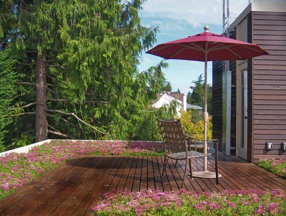 aus dem alten und undichten flachdach ein modernes Gründach erzeugen