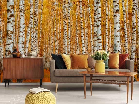 gemütliche atmosphäre im wohnzimmer gestalten durch akzentwand mit fototapete birkenwald im herbst