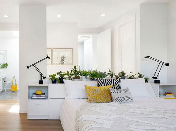 grünpflanzen in der rolle vom raumteiler in offenen räumen und 1 zimmer appartements