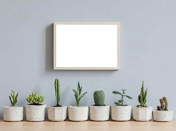 minimalistische Zimmerdeko mit Sukkulenten in attraktiven DIY Blumentöpfen aus Beton