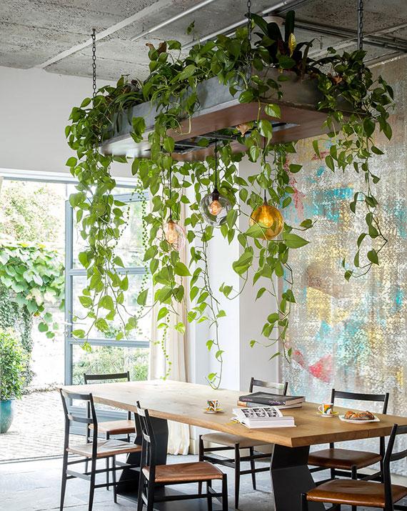 coole raumgestaltung im wohnbereich mit hängepflanzen und pendellampen über dem esstisch