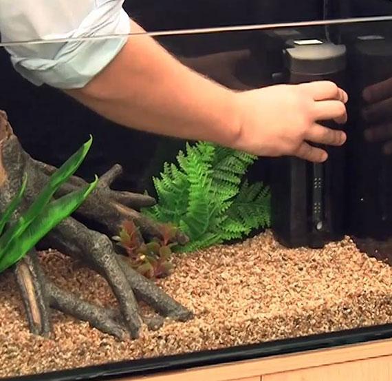 die richtige wahl passender filter und filtermaterialien für das aquarium