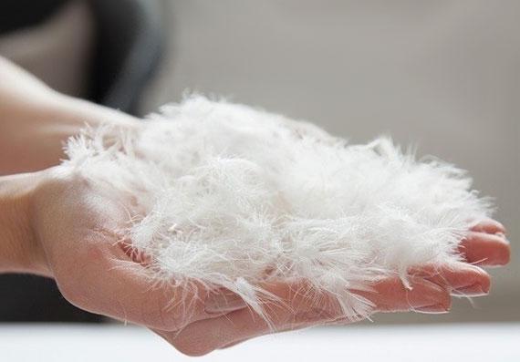 Bei der Daunendecke kommt es auf den Anteil der Daunenfedern in der Bettdecke an