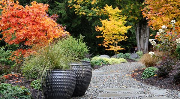 Pflanzkübel bringen einmalige Schönheit und Struktur in den Garten