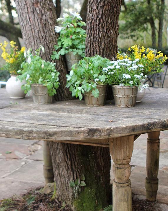 außenbereich in grüne oase verwandeln mit schattenliebenden pflanzen im pflanzkübel