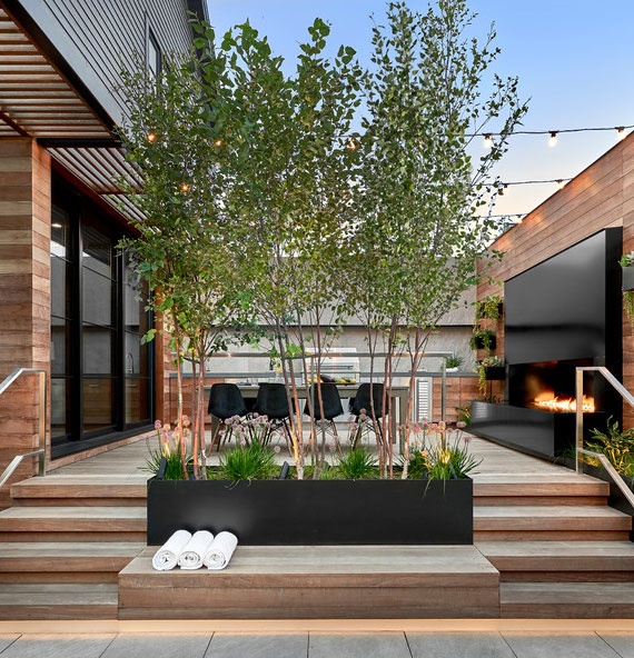 pflanzkübel mit bäumen zur begrünung von terrassen und balkon