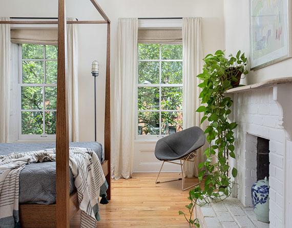 welche Zimmerpflanzen sorgen für entspannte Atmosphäre und filtern zugleich Benzol oder Kohlenmonoxid aus der Luft